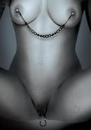 Ffle Nipple And Clit Jewelry Black